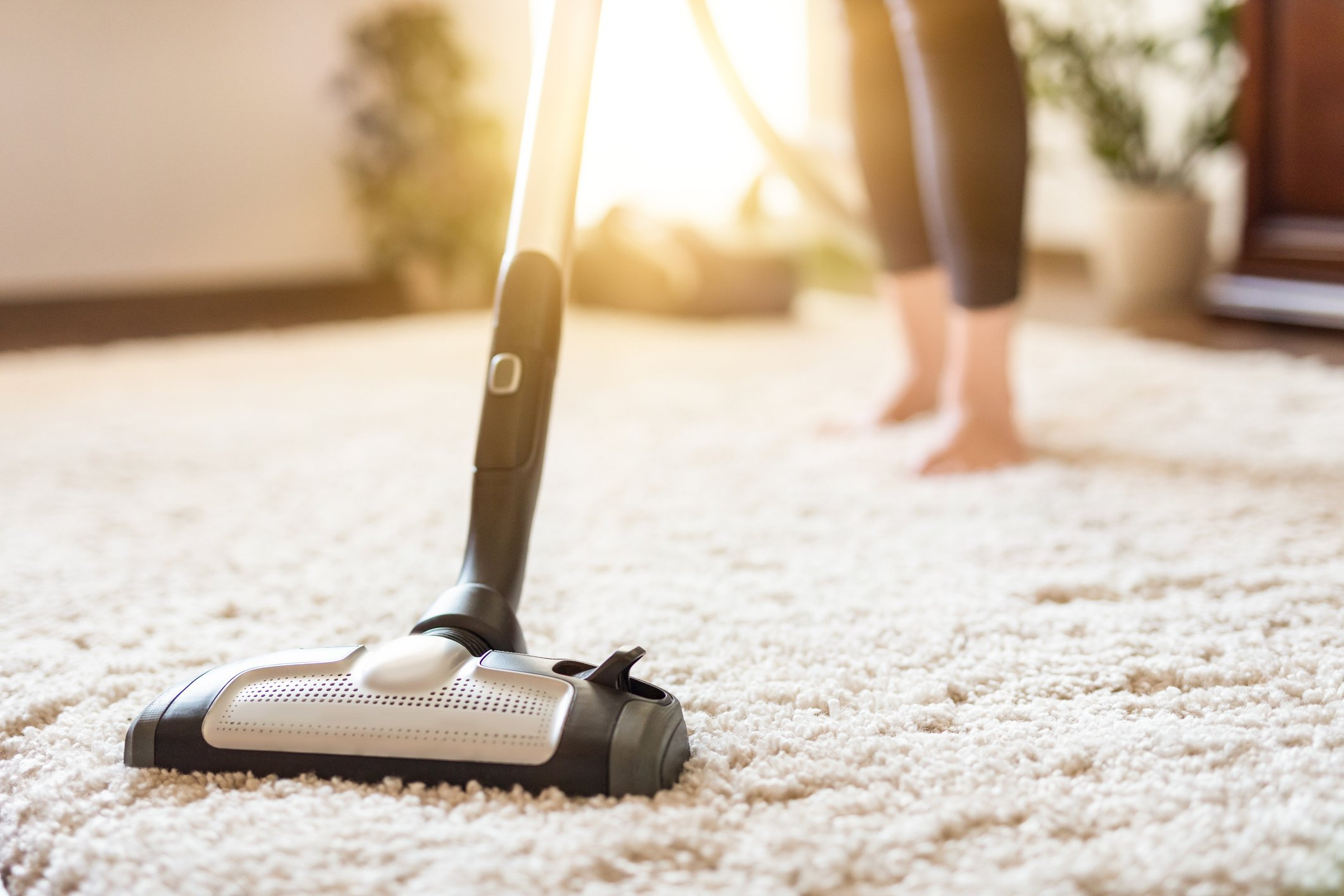 quality carpet cleaning service